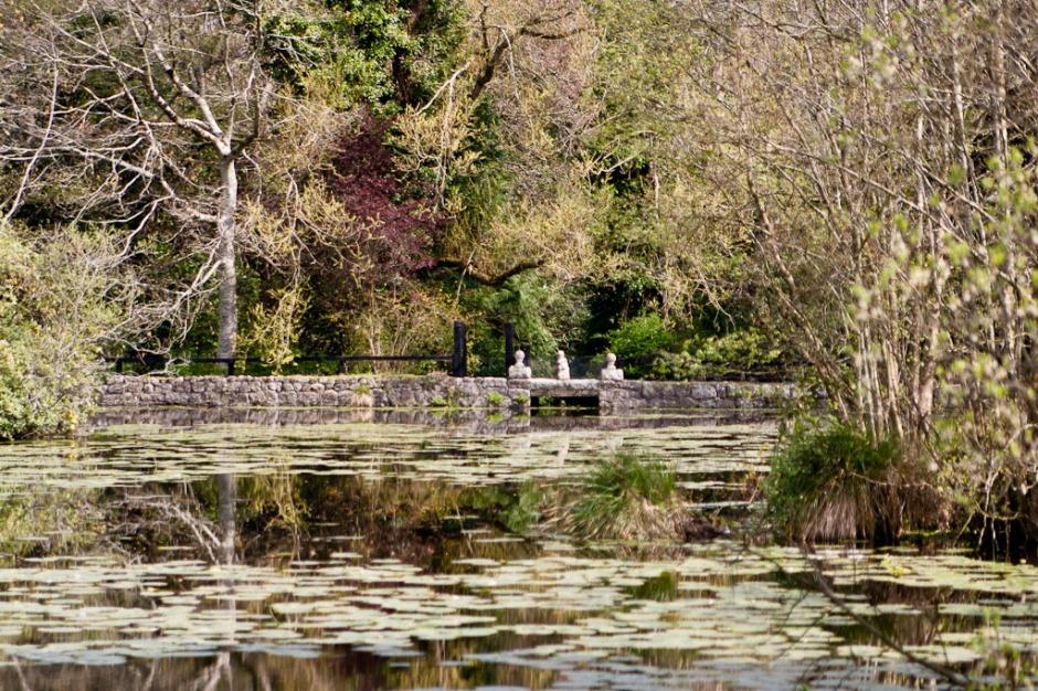 Altamont Garden - pond