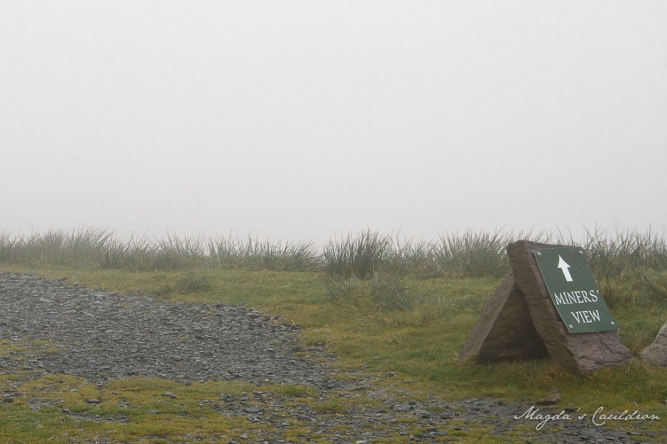 kerry in the fog