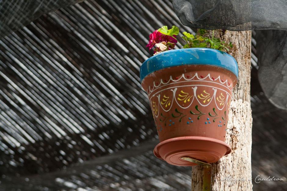 Spain - flower pot