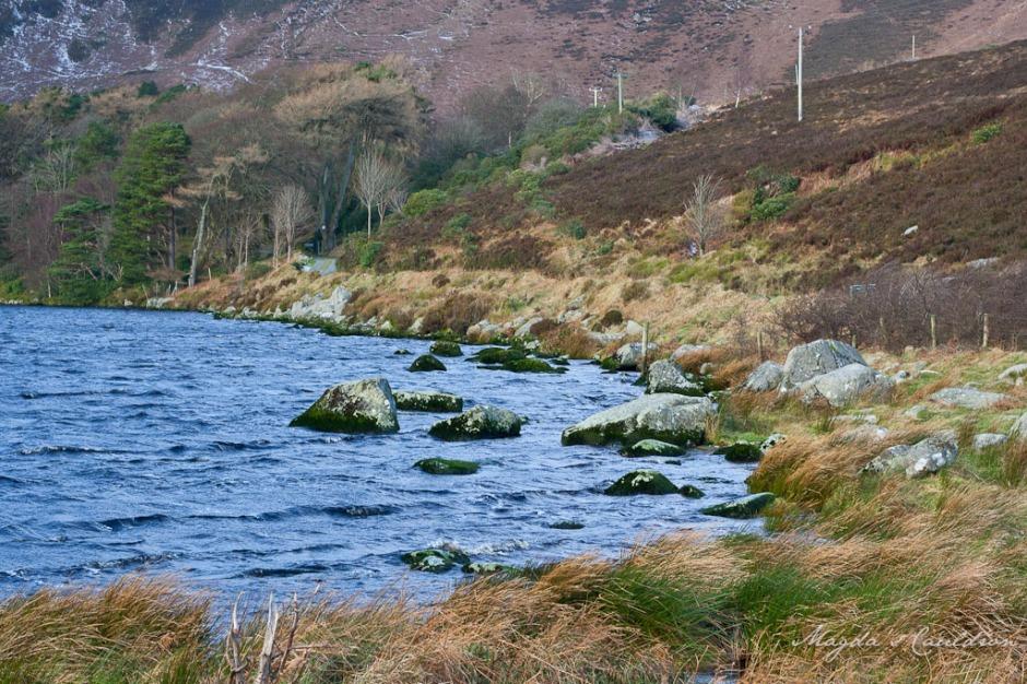 Dublin Mountain Winter-7848
