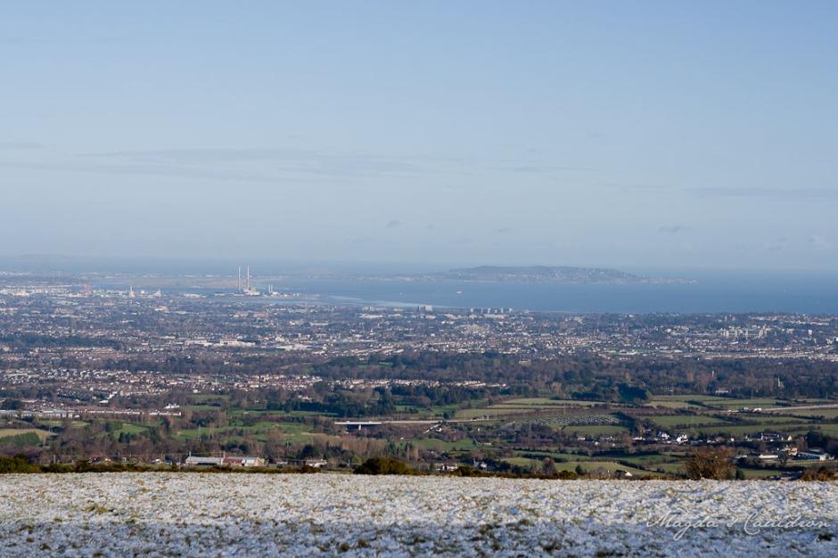 Dublin Mountain Winter-7857