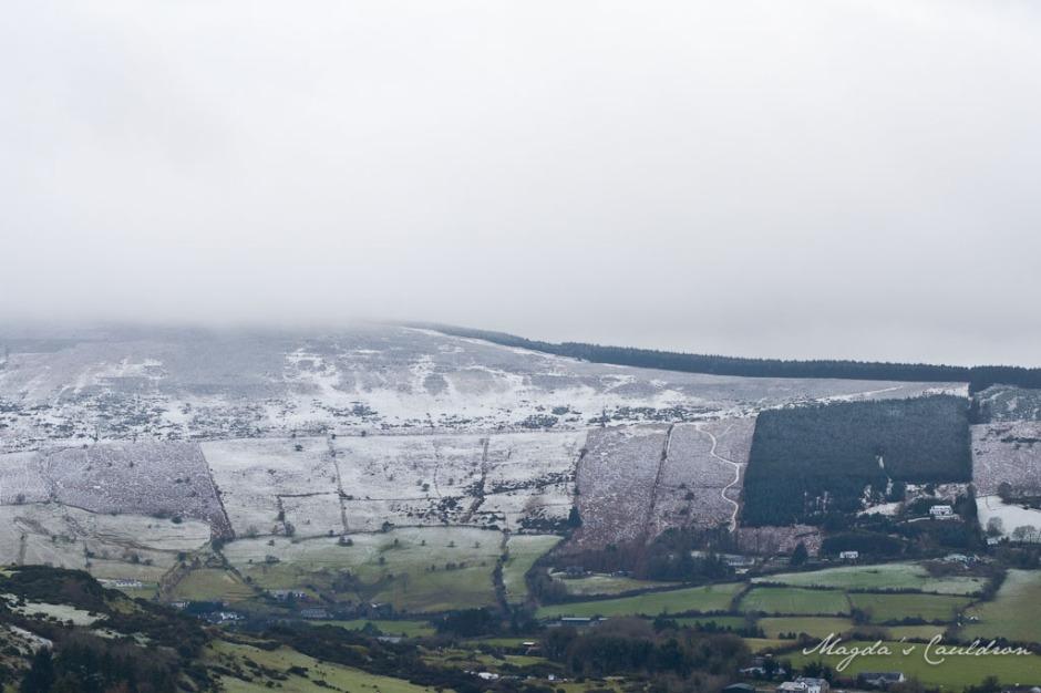 Dublin Mountain Winter-7859