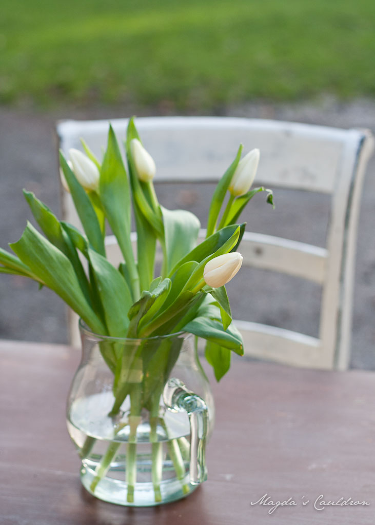 Tulipan bunch in a vase