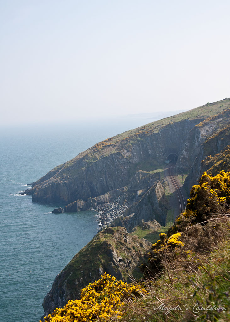 Cliffs between Greystones and Bray